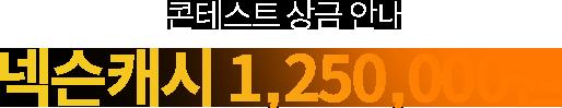 콘테스트 상금 안내 - 넥슨캐시 1,250,000원